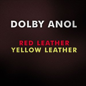 Imagem de 'Red Leather / Yellow Leather'