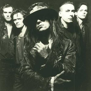 Immagine per 'Fields of the Nephilim'