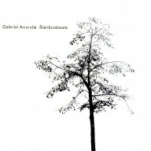 Image for 'Bambusbeats'