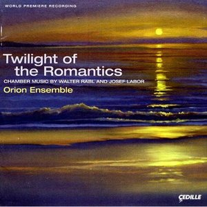 Image for 'Twilight of the Romantics: Chamber Music by Walter Rabl and Josef Labor'