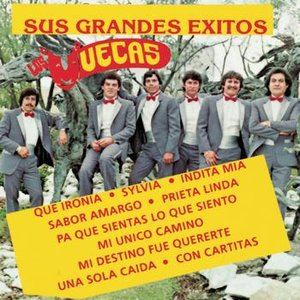 Image for 'Sus Grandes Exitos'
