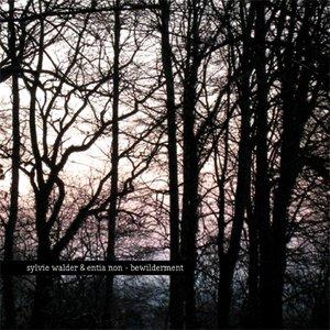 Image for 'sylvie walder & entia non'