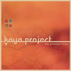 Image for 'The Ambient Mixes'