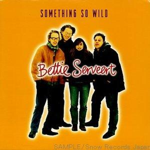 Image for 'Something So Wild'