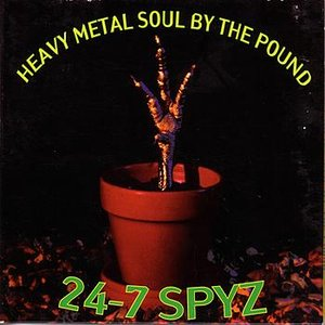 Image for 'Heavy Metal Soul By The Pound'