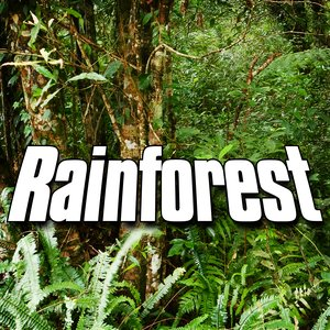 Image for 'Rainforest Rainshower and Wildlife'