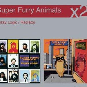 Immagine per 'Fuzzy Logic / Radiator'