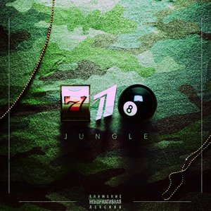 Image for '718 Jungle'