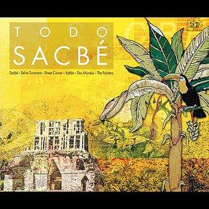 Image for 'Todo Sacbe', Vol. 1'
