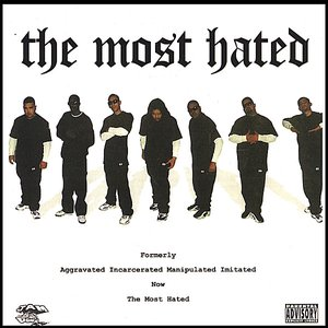 Image for 'The Most Hated'