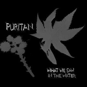 Bild für 'What We Saw In The Water (mp3)'
