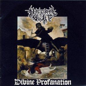 Image for 'Divine Profanation'