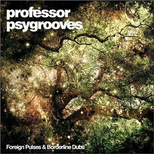 Image for 'Professor Psygrooves'