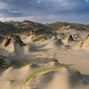 Image for 'Dune Worship'