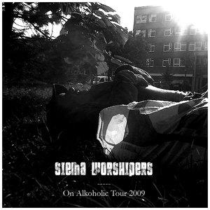 Immagine per 'On Alkoholic Tour 2009 (live)'