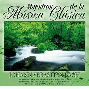 Bild für 'Maestros de la Musica Clasica - Johann Sabastian Bach'