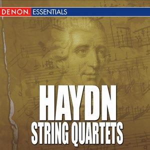 Image for 'Haydn - String Quartets'