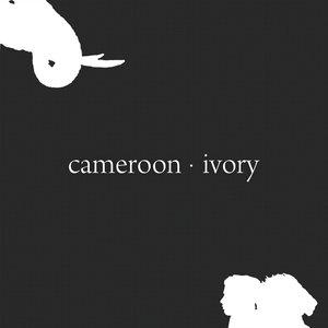 Immagine per 'Ivory'