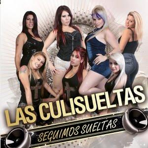 Image for 'Seguimos Sueltas'