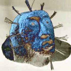 Image for 'Shaman Headinvader'
