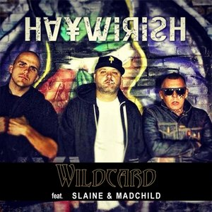 Bild für 'Haywirish (feat. Slaine & Mad Child)'
