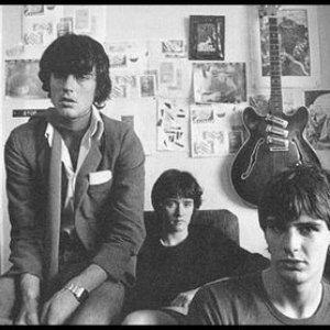 Bild för 'The Verlaines'