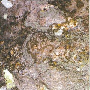 Image for 'Hertz 1 - Corona'