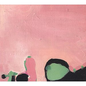 Image for 'Beyond The Pink'