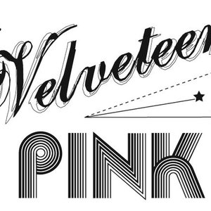 Image for 'velveteen pink'