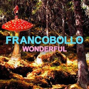 Image for 'Wonderful'