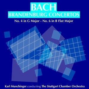 Image for 'Bach: Brandenburg Concertos No 4 in G major & No 6 in B flat major (Remastered)'