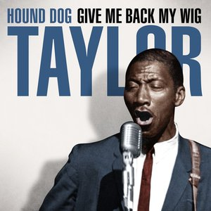 Image for 'Hound Dog Taylor - Give Me Back My Wig'