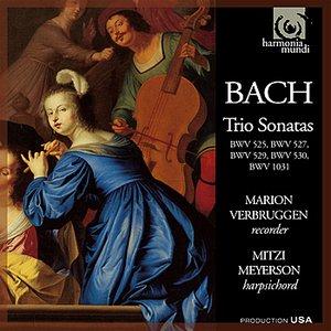 Image for 'Trio Sonata V, BWV 529: I. Allegro'