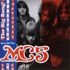 Bild för 'The Big Bang: The Best of the MC5'