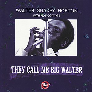 Image for 'They Call Me Big Walter'