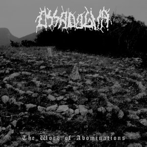 Image for '2010 - The Word of Abominations'