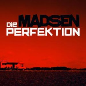 Image for 'Die Perfektion'