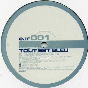 Image for 'Tout Est Bleu'