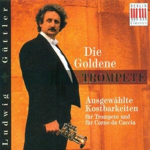 Image for 'Trumpet Concerto in E flat major: III. Allegro'