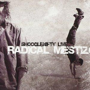 Image for 'Radical Mestizo'