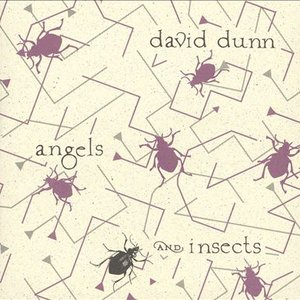 Immagine per 'Angels and Insects'