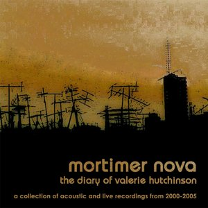 Image for 'The Diary of Valerie Hutchinson: A Collection of Acoustic and Live Recordings from 2000-2005'