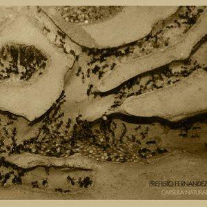 Image for 'Capsula Natural'
