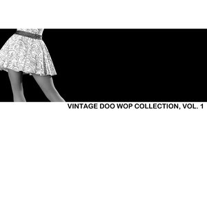 Image for 'Vintage Doo Wop Collection, Vol. 1'