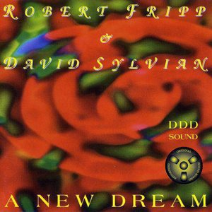 Image for 'A New Dream - Tokyo 1993'