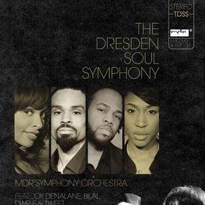Image for 'MDR Symphony Orchestra'