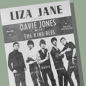 Image for 'Davie Jones and the King Bees'