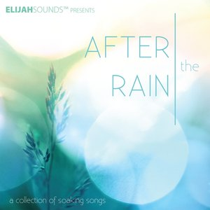 Image for 'After the Rain: A Collection of Soaking Songs'
