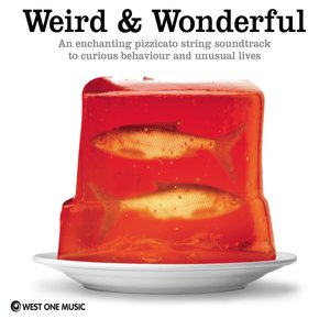 Image for 'Weird and Wonderful'
