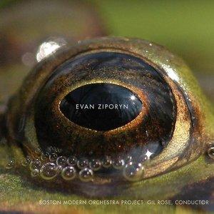 Imagen de 'Frog's Eye'